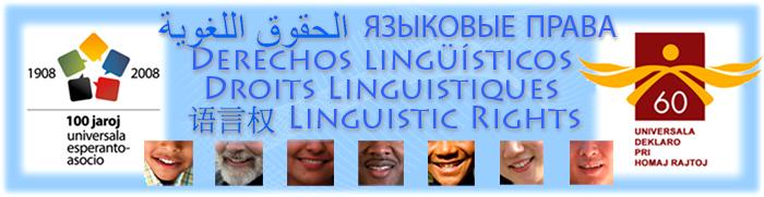 Simpozio-pri-lingvaj-rajtoj-24-04-2008-UN-Genevo_ar_ru_es_fr_zh_en_UN_ONU_700x181x150dpi.jpg